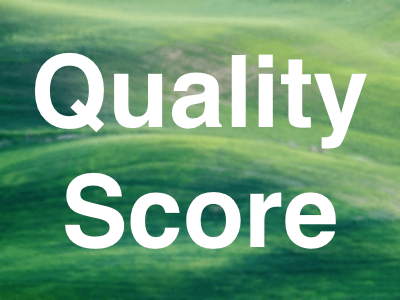 Google Ads Quality Score - How To Improve It